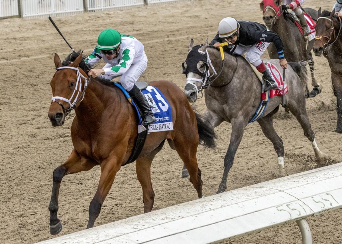 Horse race betting new orleans intrade political betting sports