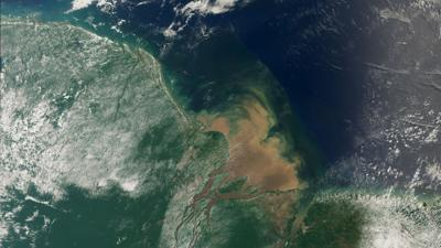 Amazon River outflow