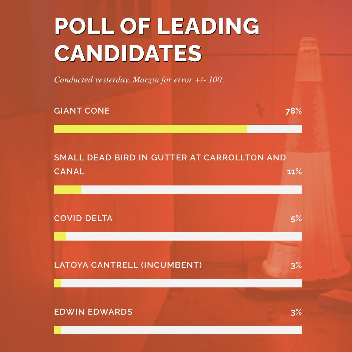 cone polling.jpg