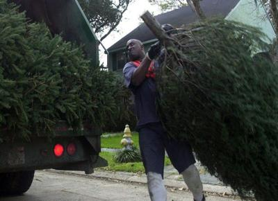 7 things to know about Christmas tree recycling