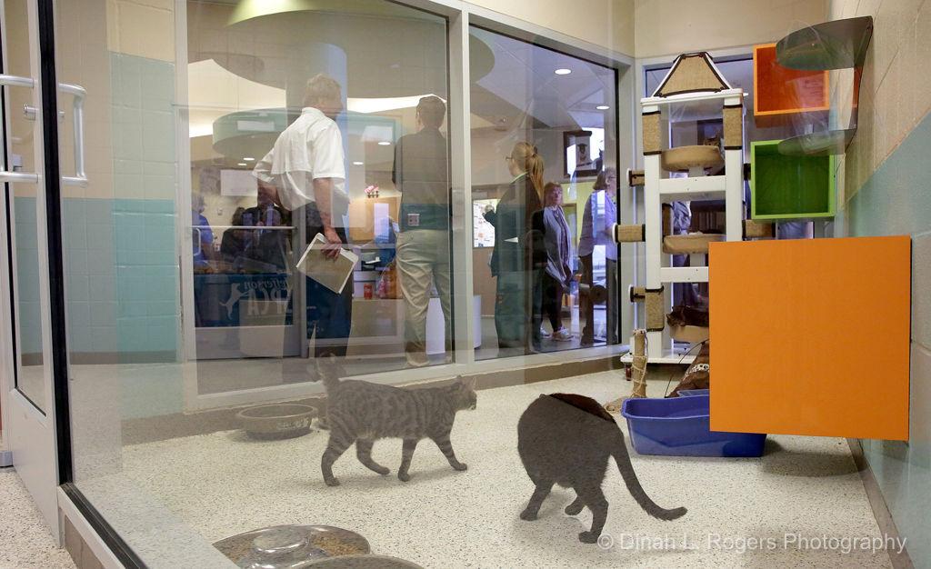 Grand Opening celebrates Jefferson Parish Animal Shelter's new West Bank location
