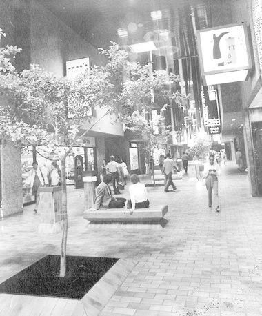 The Lake Forest Plaza: a mall that was more than a mall