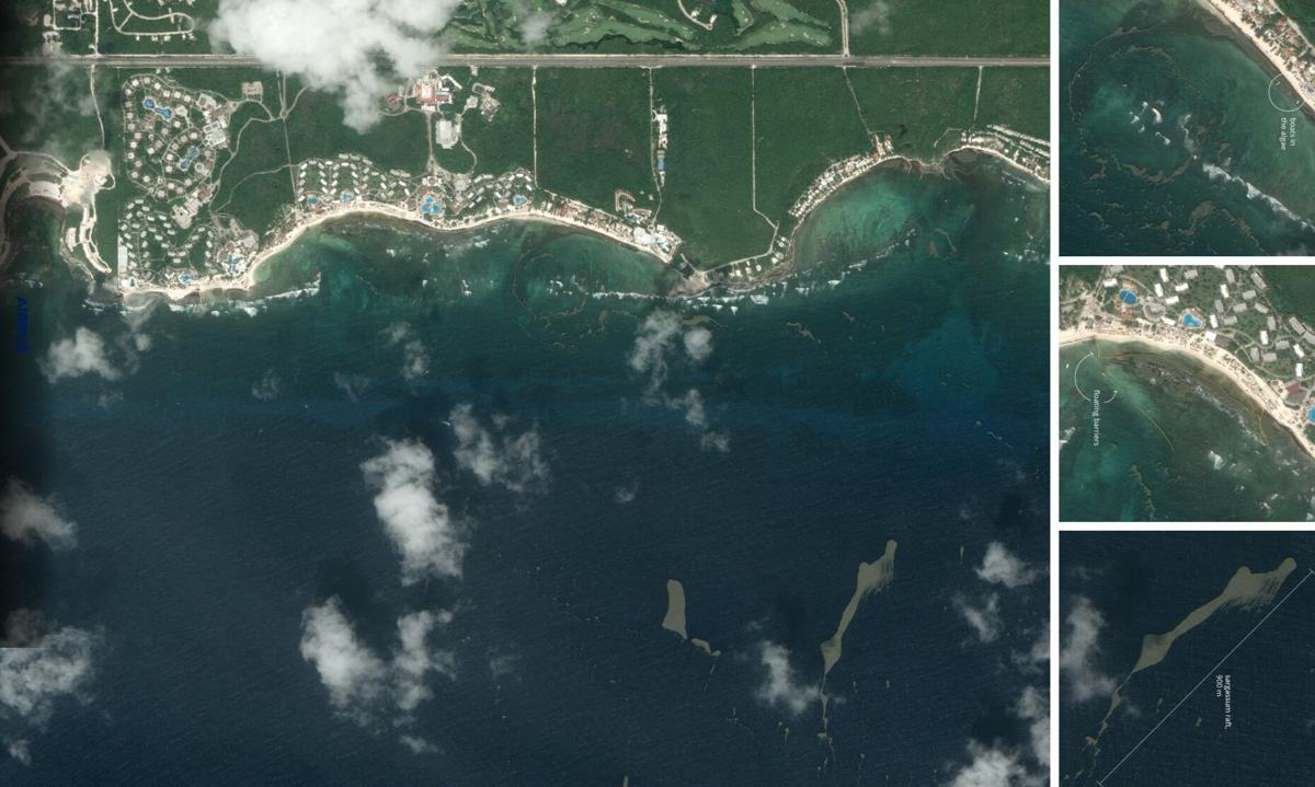 Puerto Aventuras sargassum