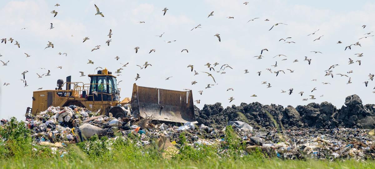 no.landfill.adv.006