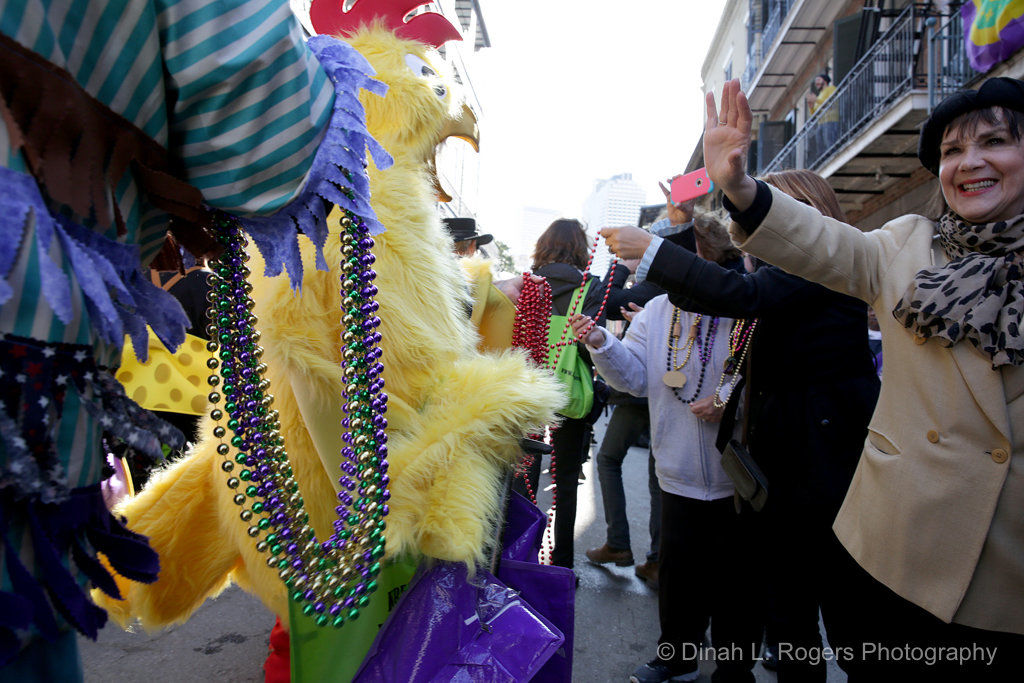 Krewe of Cork rolls in the French Quarter: See photos