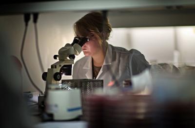 Coronavirus stock file photo at CDC
