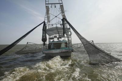 Gulf Oil SPill Shrimpers Under Pressure (copy)