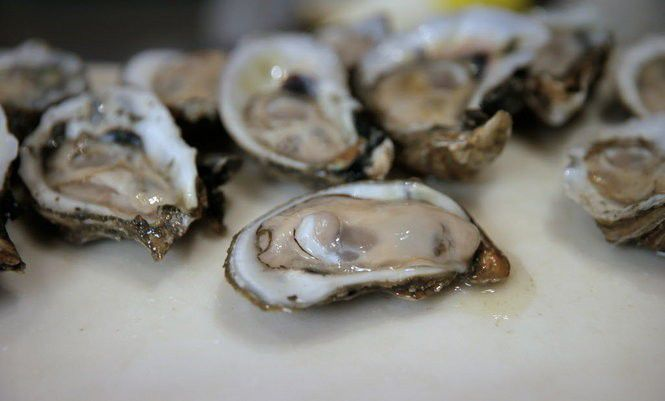 16 places to eat oysters in New Orleans right now