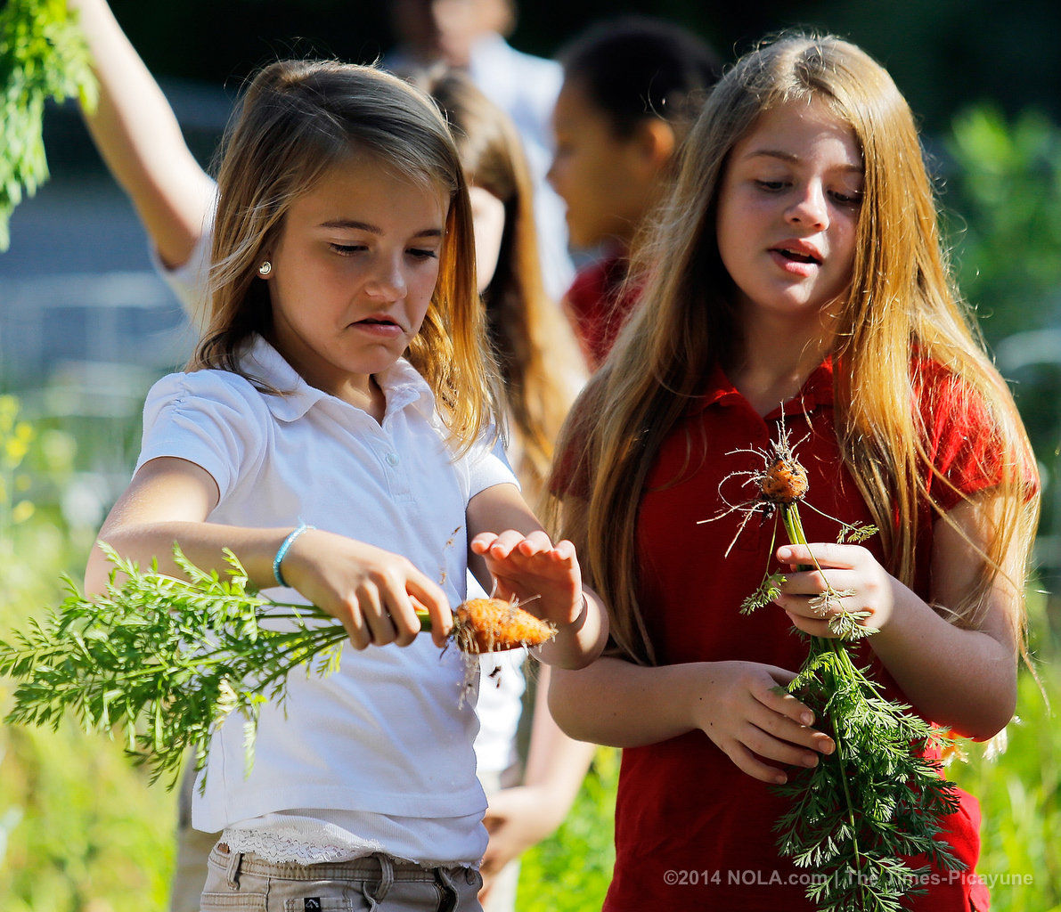 Bayou Lacombe Middle School students tend to their garden