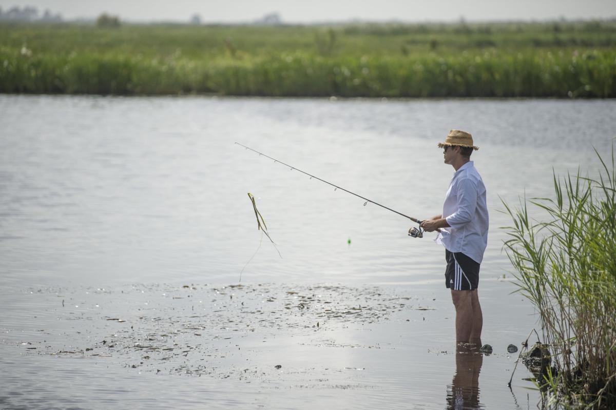 NO.Fishtesting.ADV_15.JPG