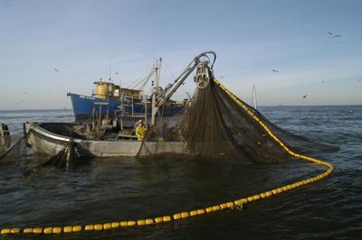 Menhaden boat and net