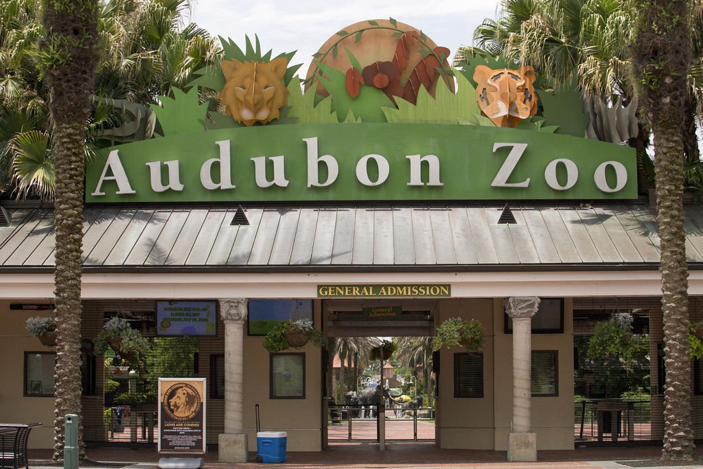 Here's how to get free admission to the Audubon Zoo and aquarium in New Orleans