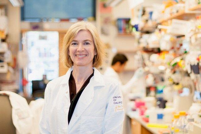 'Code Breaker': Nobel scientist Jennifer Doudna stars in Walter Isaacson's tale of gene editing