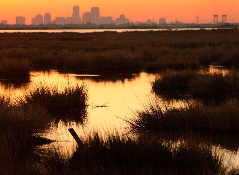 Rapid erosion of Louisiana coast only expected to accelerate _lowres