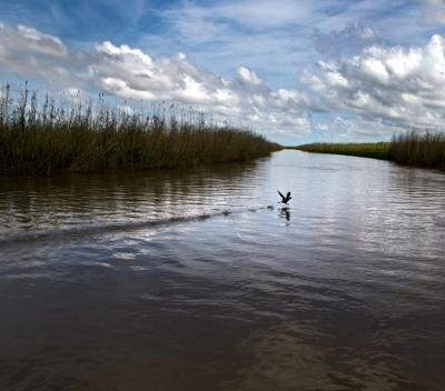 New oil terminal in Plaquemines would compound coastal damage