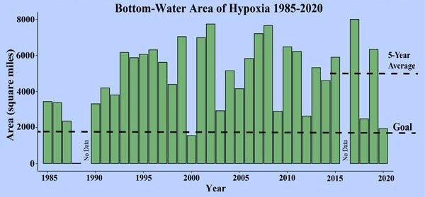 Hypoxia area by year