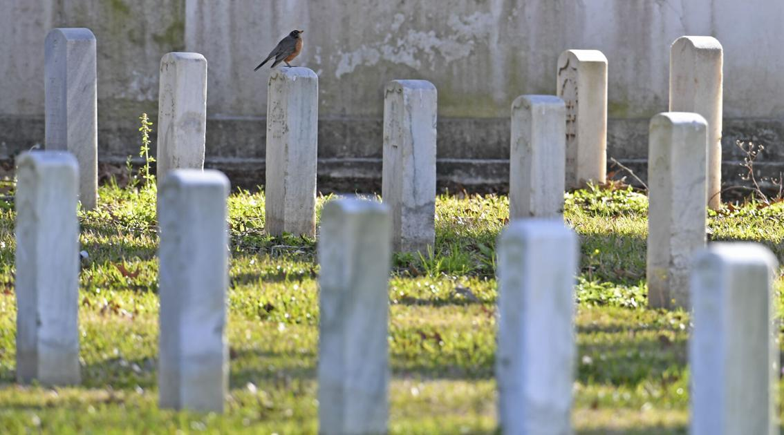 Louisiana deaths jumped by nearly 30% in 2020: How the victims died - NOLA.com