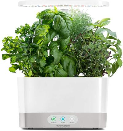 COOL GREENS aerogarden amazon.jpg