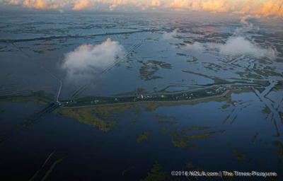 Coastal restoration scientists arrested on trade-secret theft allegations (copy)