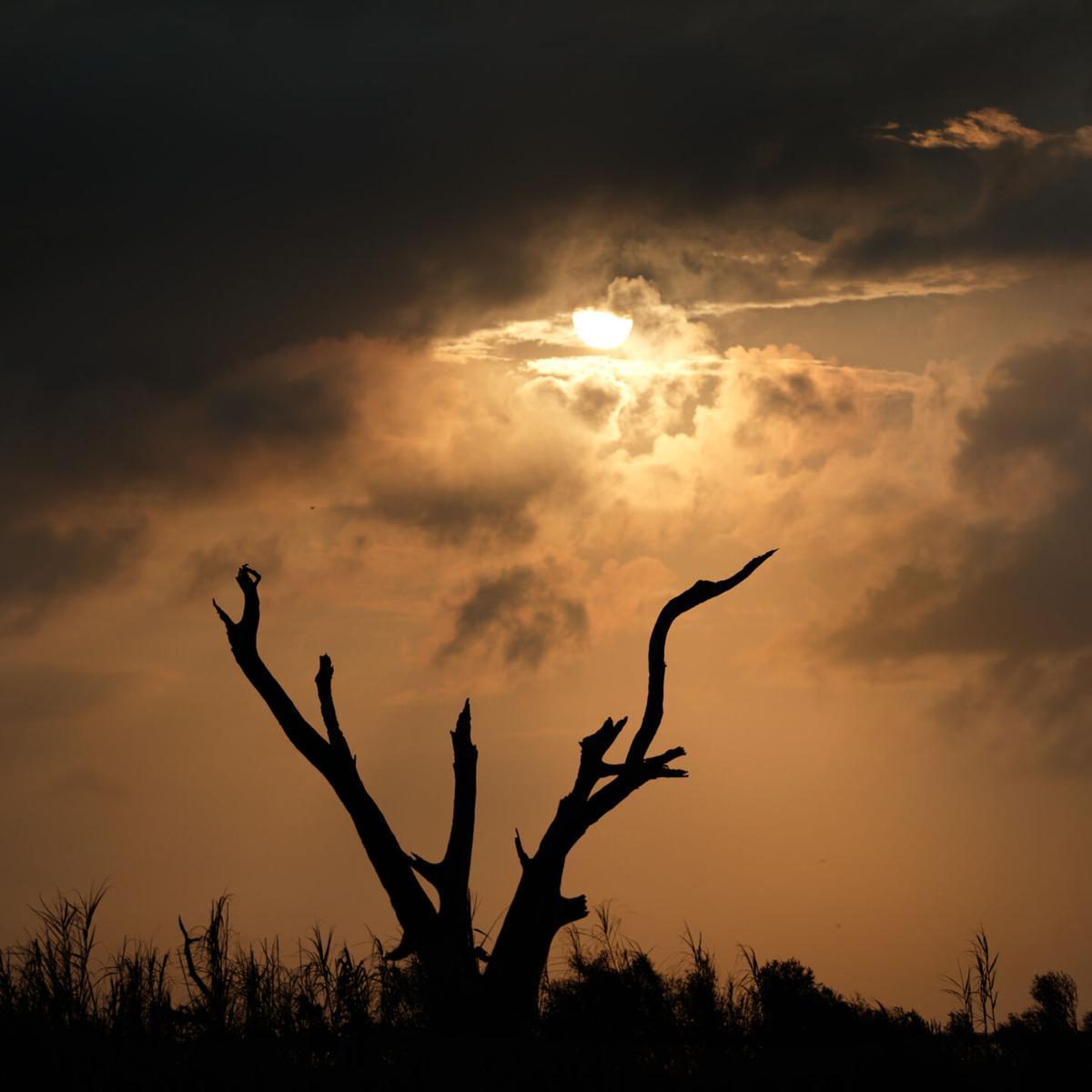 hurricane ida_0002.jpg
