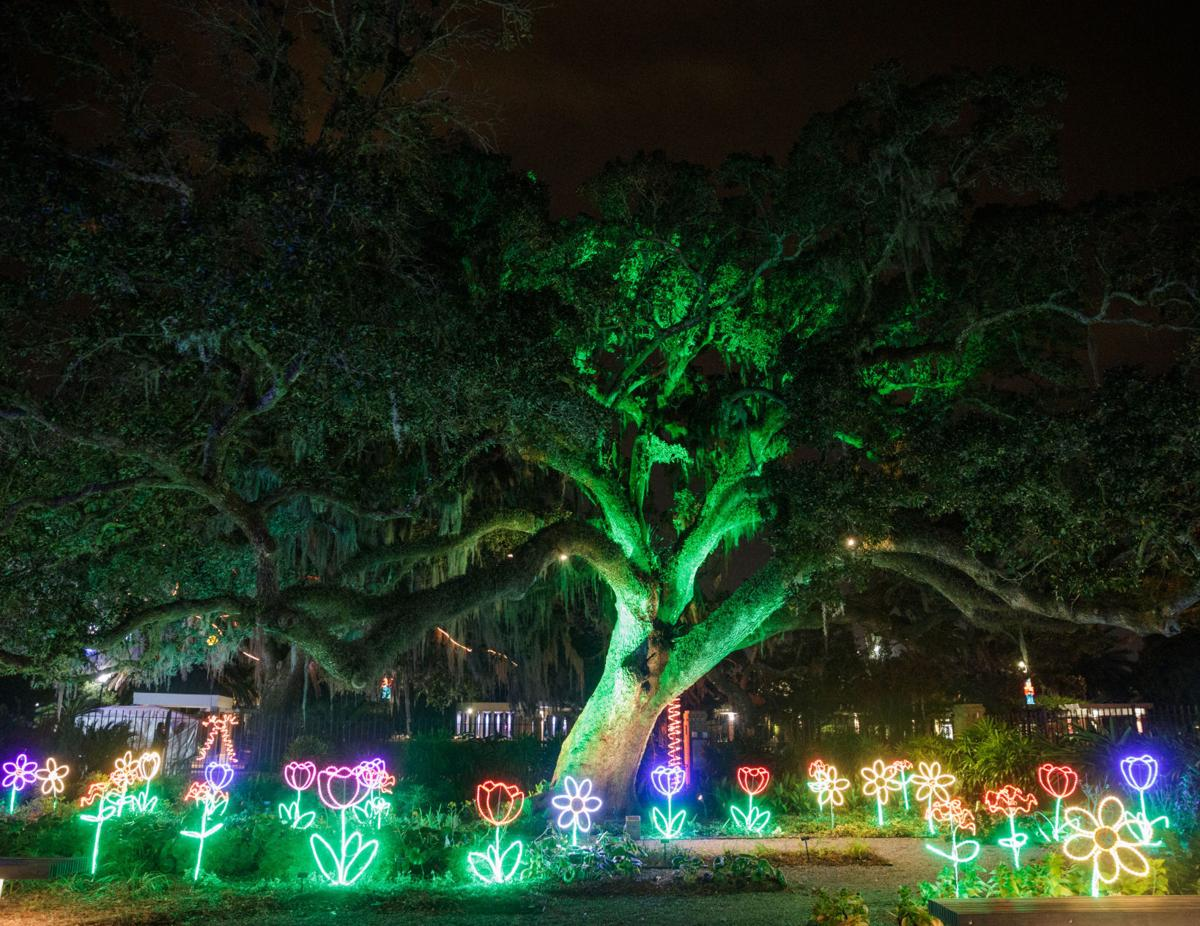 Christmas In The Park 2021 Lafreniere Add A Little Sparkle To Your Life With These Holiday Events Crescent City Community News Nola Com