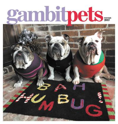 Gambit's Pets, winter 2017_lowres