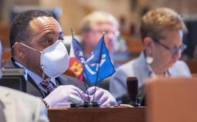 legislature masks