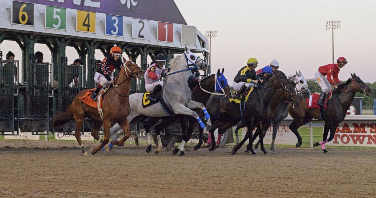 NO.racehorserescue.adv.039.JPG
