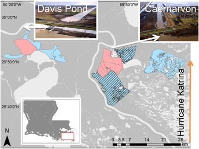 Davis Pond and Caernarvon freshwater diversions