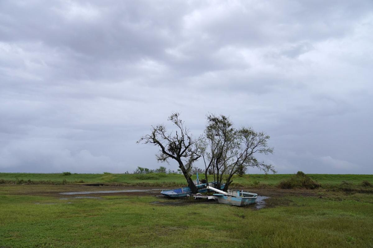 Hurricane Ida Louisiana Seafood