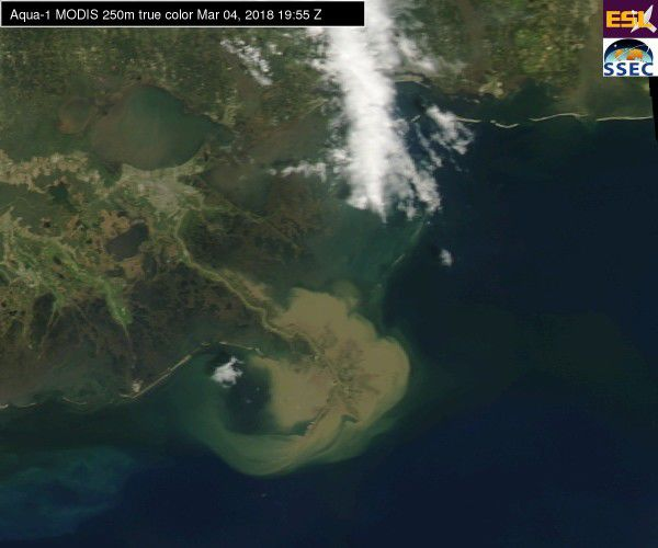 Cool satellite image shows rising Mississippi River pouring sediment into the Gulf of Mexico