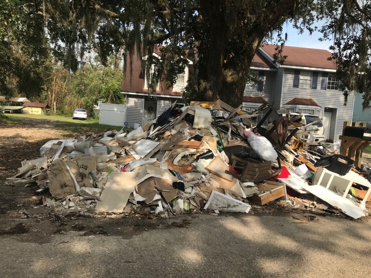 Palm Lake debrs.jpg
