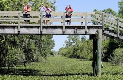 Fixing Louisiana national park sites could boost local jobs