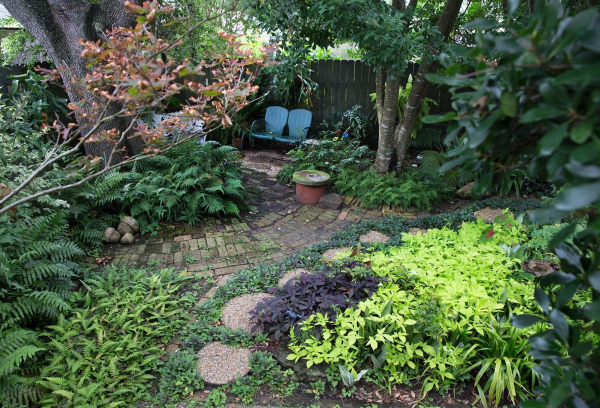 Fern Garden in Metairie is a hidden wonderland (copy)