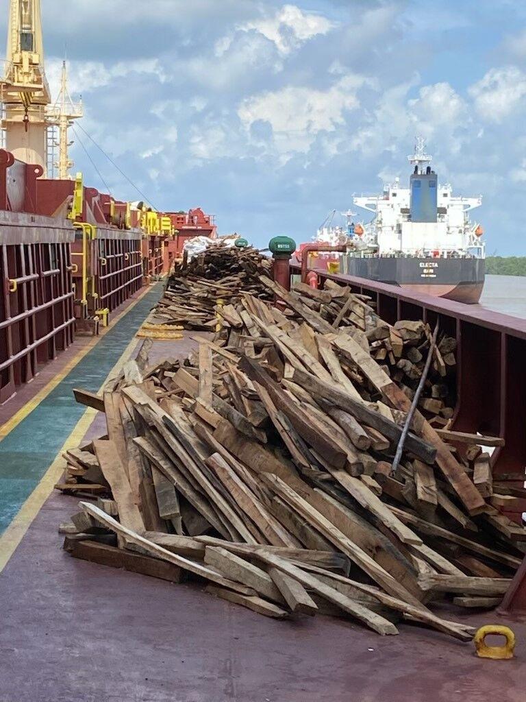 Damaged wood on Pan Jasmine