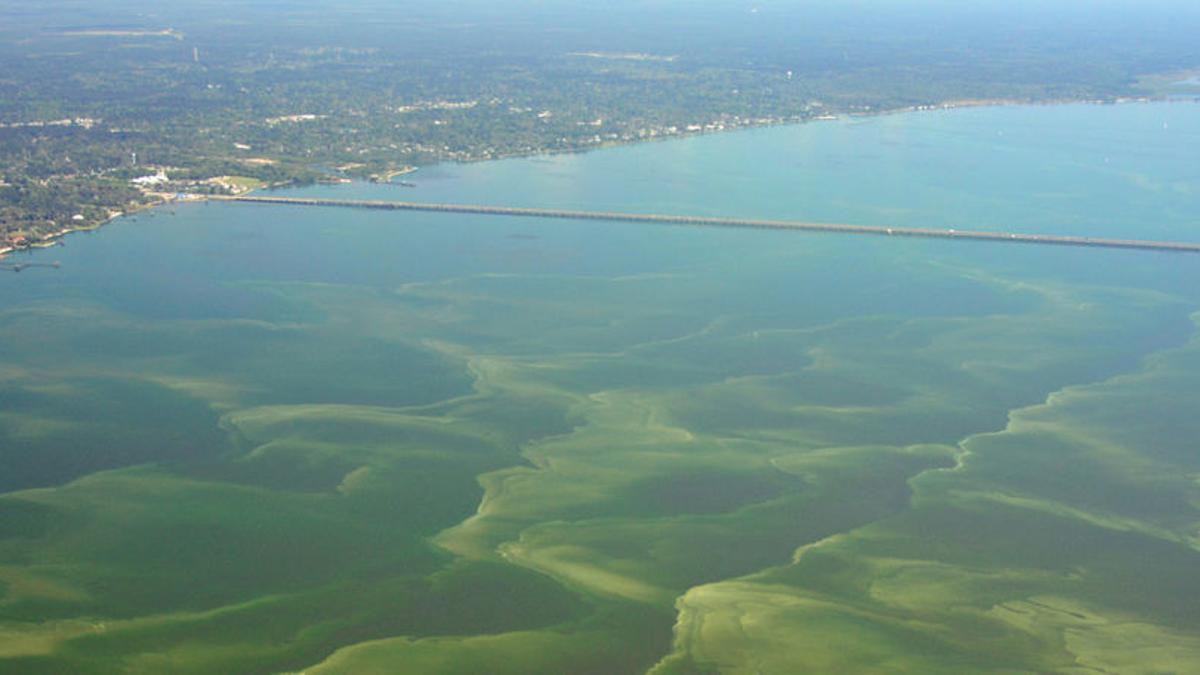 Don T Swim At These 25 Mississippi Gulf Coast Beaches Officials