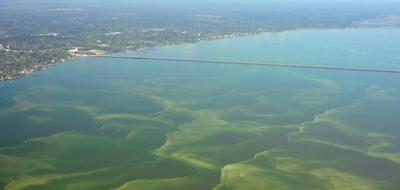 Algae bloom, possibly toxic, spreads across Lake Pontchartrain