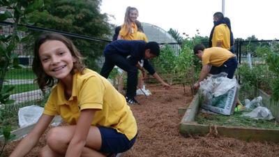 Belle Chasse Academy victory herb garden.jpg (copy)
