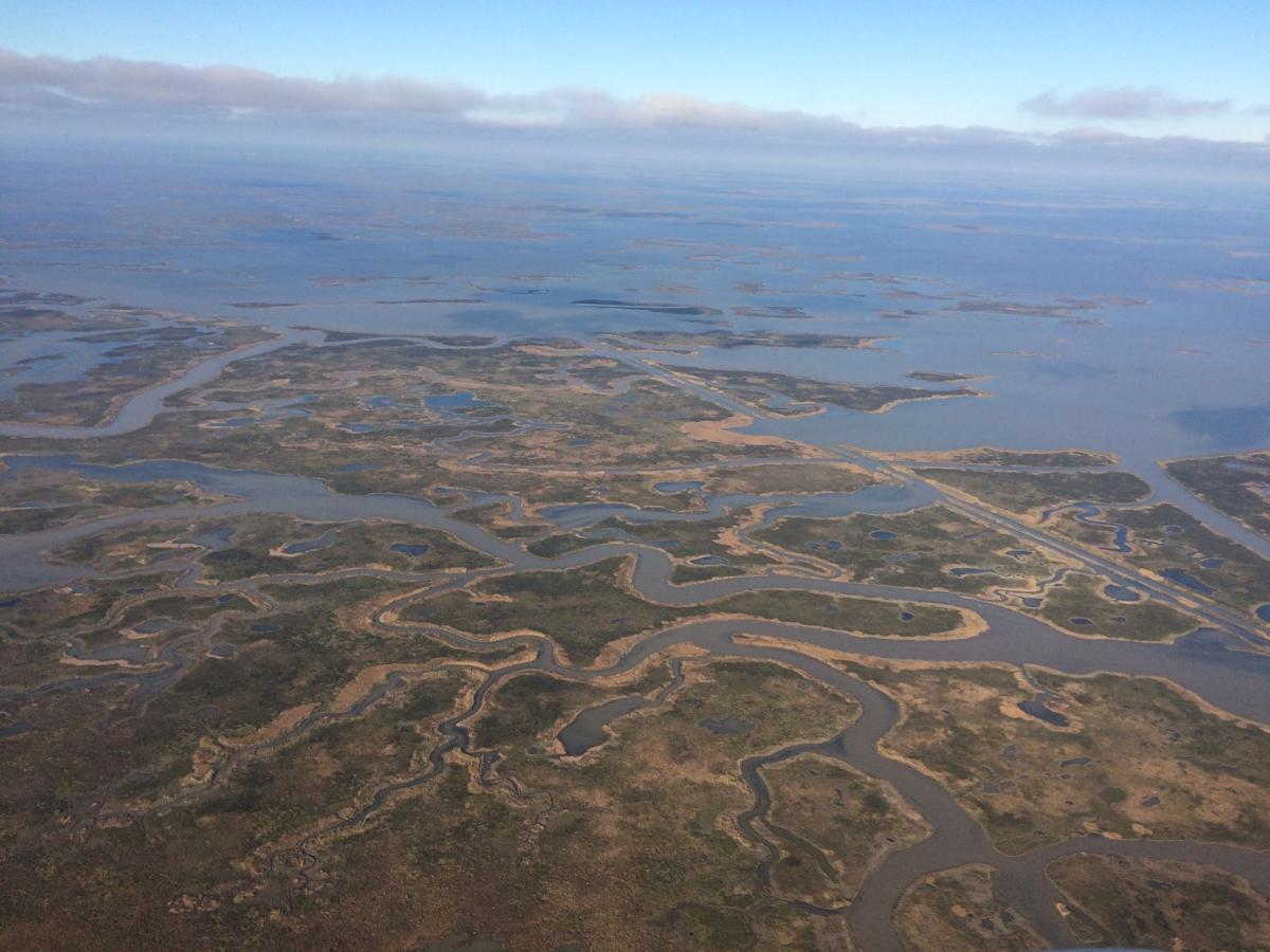 Sea level rise is underestimated in southern Louisiana, Tulane study finds