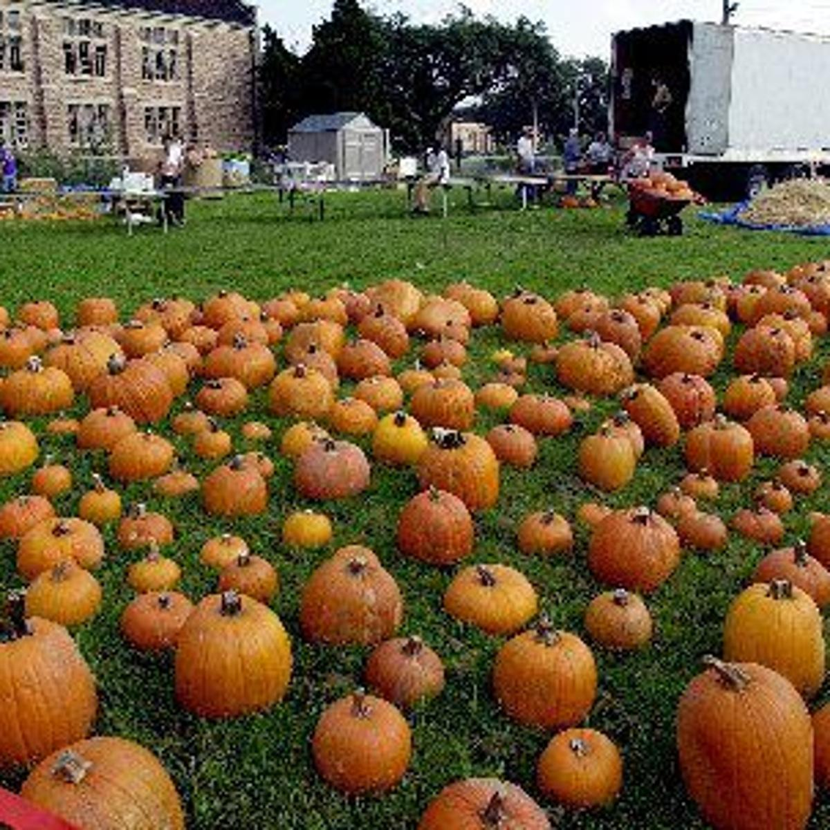 Claiborne Avenue; pumpkin pancakes