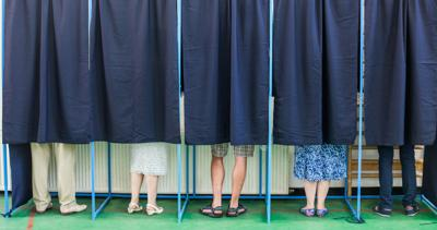 People voting in booths (copy) (copy)