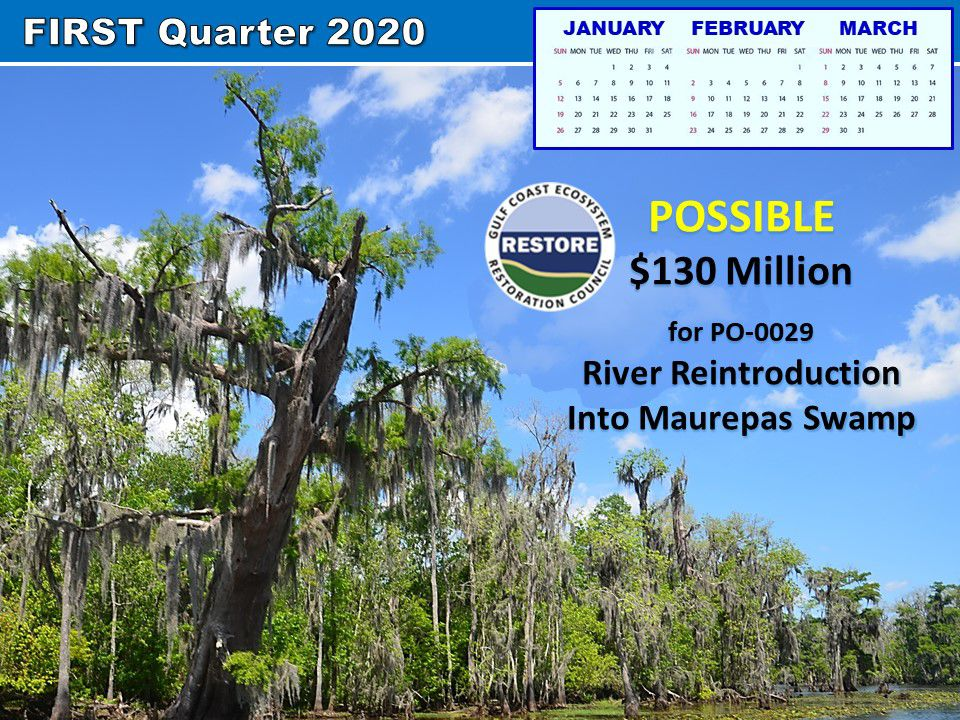 Funding for Maurepas Swamp project expected in February