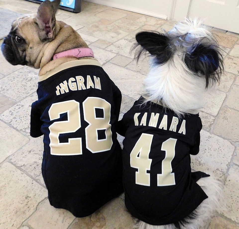 The Who-Dog Nation: See photos of the New Orleans Saints