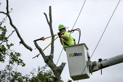 CLECO contractor trims trees near power line
