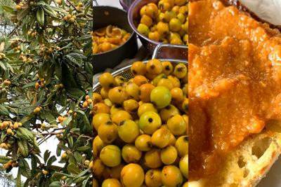 The beyond-tedious process of converting loquats into misbelief butter