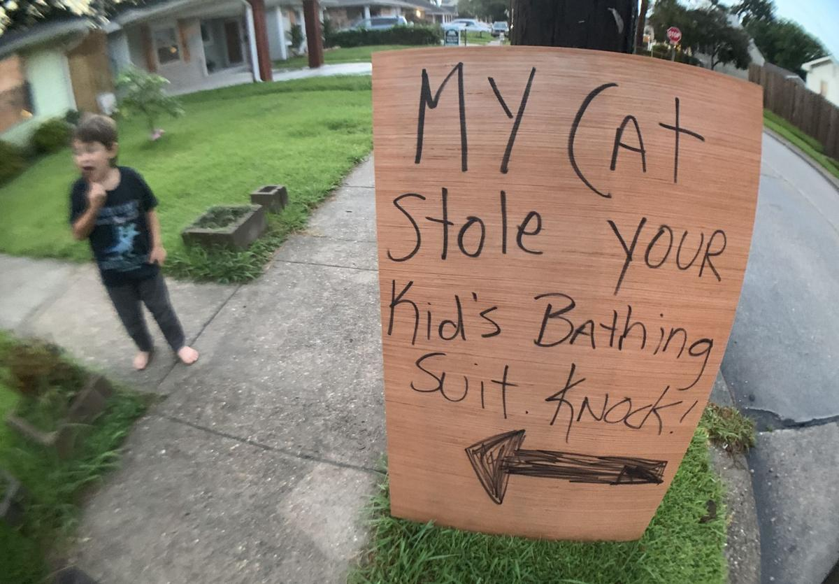 Sign meant to locate the owner of clothes stolen by Admiral Galacticat.jpeg
