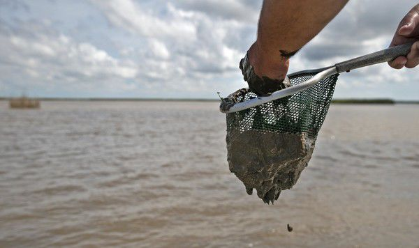 Plaquemines Parish throws wrench in state's plan to rebuild the coast