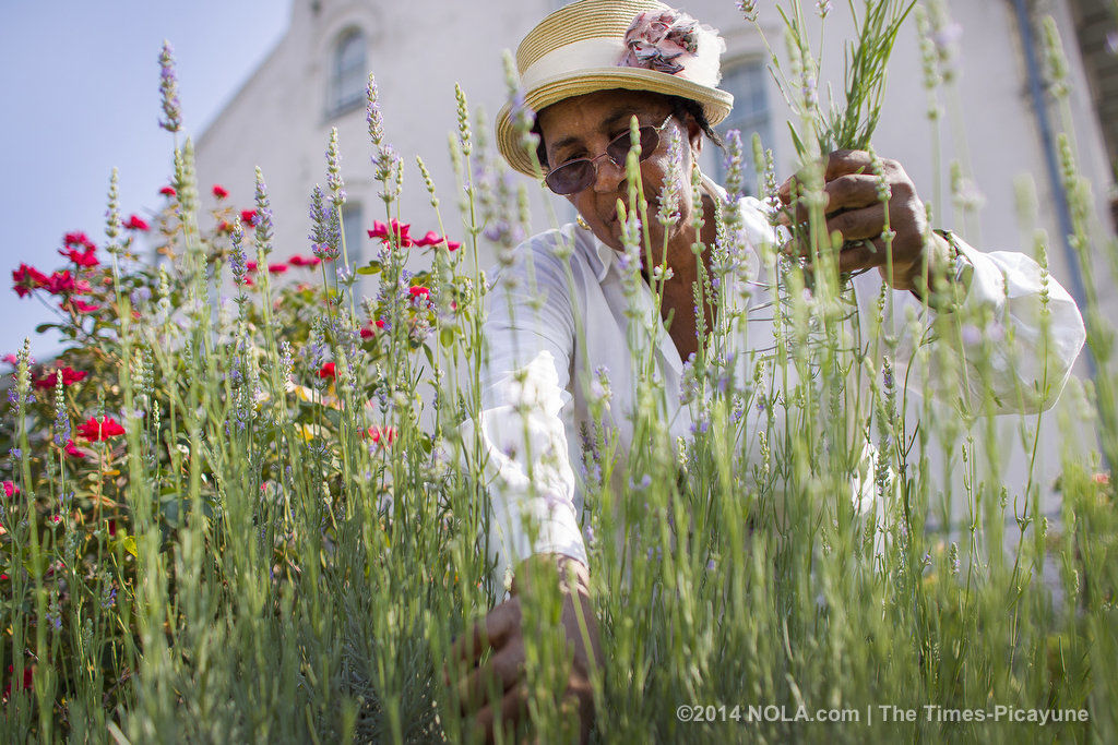 The farm-to-vase movement: Local flower farms sprout on urban lots around New Orleans (copy)