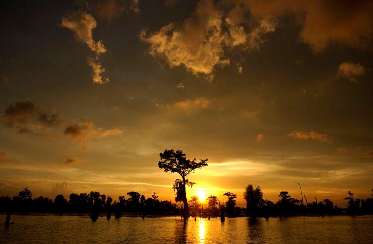 Sunset on Henderson Swamp