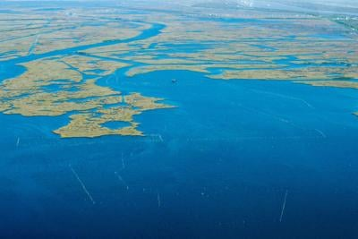 Barataria Bay's disappearing wetlands